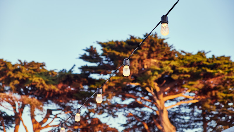 Lights Bulbs. Fort Mason Center
