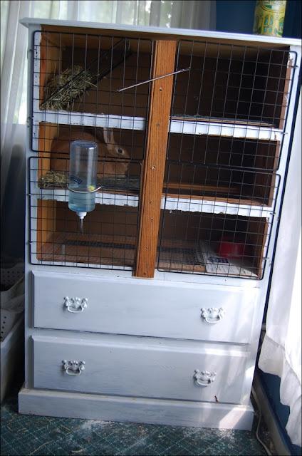 contoh gambar desain kandang untuk ternak kelinci hias yang baik dan sehat