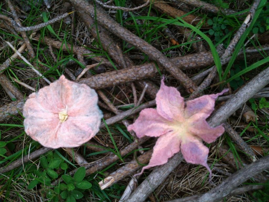 flores feltradas rosas no meio de galhos