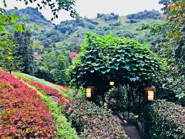 Terrazas de Flores Botanical Garden