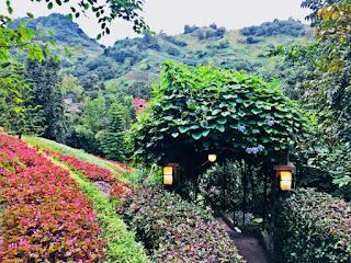 Terrazas de Flores Botanical Garden - Malubog, Cebu City