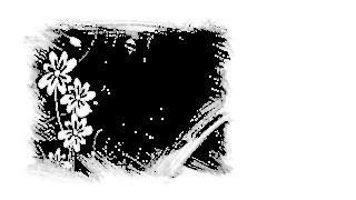 7 - Flores TR e branco 2 png