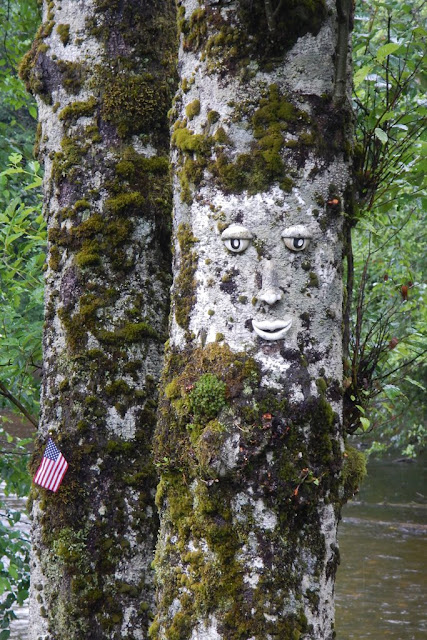 Ketchikan Creek Street smiling tree