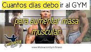 motivación gym masa muscular