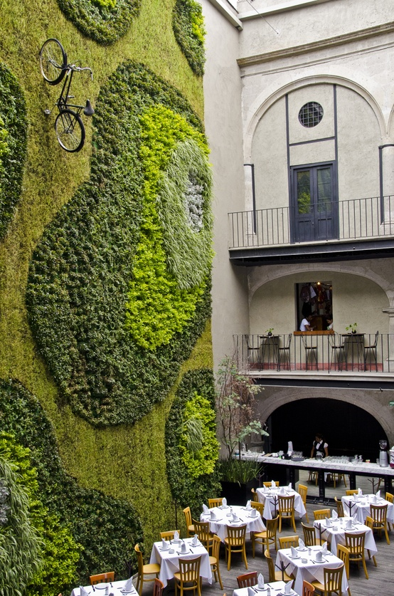 22 Amazing Vertical Garden Ideas For Your Small Yard: Architectural Products Blog: Greening The Globe: Beautiful