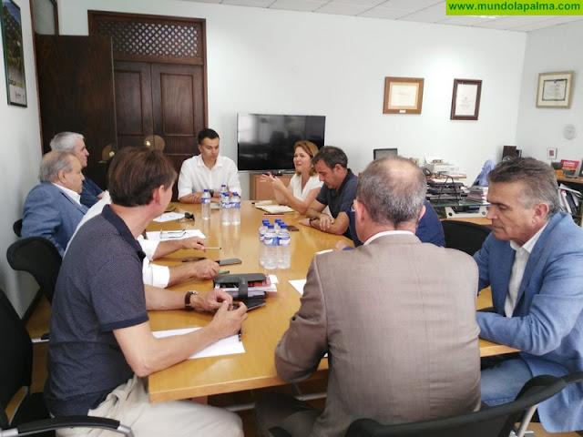 Cabildo, Gobierno de España y sector turístico abordan acciones de promoción exterior para la isla