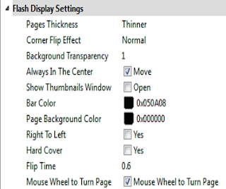 Flash Display Setting
