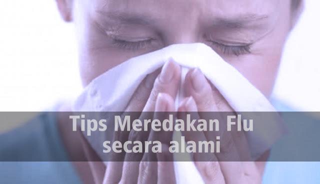 Tips Meredakan Flu Secara Alami Yang Bisa Dicoba