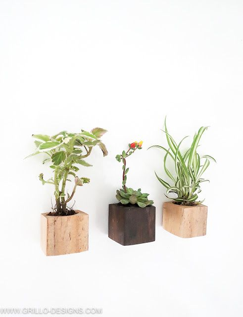 mini succulent magnet planters