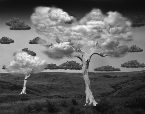 09-Natural-Disorder-Swiss-Photographer-Photo-Montage-Surreal-Thomas-Barbèy-Designer-Recording-Artist-Lyricist-Fashion