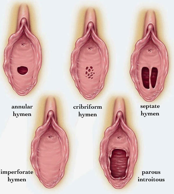 Hymen penetration photos