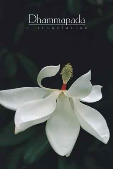 The Dhammapada - A Translation By Ven. Thanissaro Bhikkhu