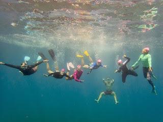 http://www.tropicallight.com/swim1/23sep18sm/23sep18sm.html