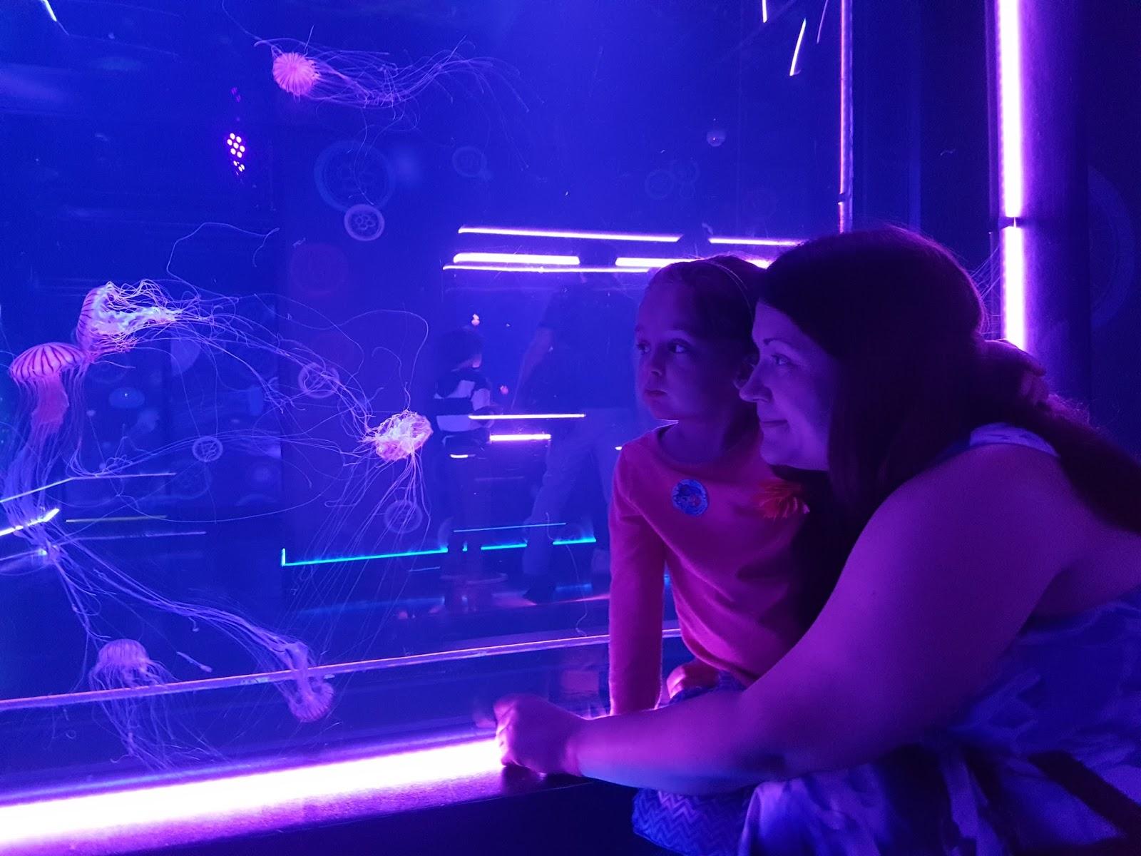 mum and daughter watching jellyfish