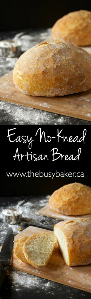 Easy No Knead Artisan Bread Recipe The Busy Baker