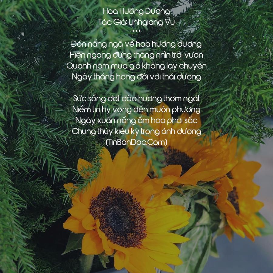 Thơ Hoa Hướng Dương, Tuyển Tập 15+ Chùm Thơ Về Hoa Hướng Dương