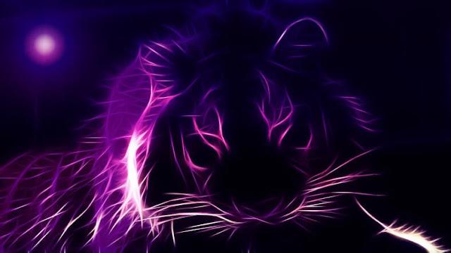 Renklerin Enerjisi- 6 Müthiş Rengin Bize Kattığı Harika Enerji Etkisi - Mor - Kurgu Gücü