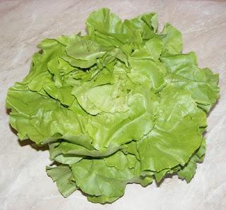 salata, legume, retete cu salata, preparate din salata, salate, retete, retete culinare, salata de gradina, salata romaneasca,