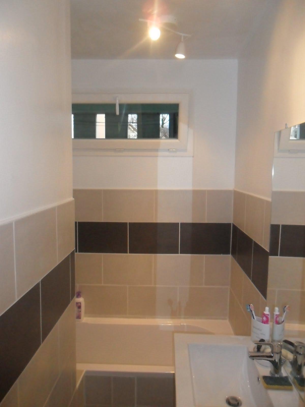 e v s multi services r novation salle de bain avant apr s. Black Bedroom Furniture Sets. Home Design Ideas