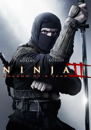 Ninja: Shadow of A Tear 2013 Dual Audio BRRip 720p