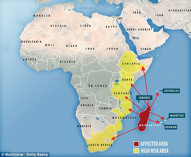 outbreak of one of the conflicts in africa history essay The outbreak of world war one and germany august 4th 1914 marks the date on which europe fell into what has become known as the great war what started as a minor squabble between austria-hungary and serbia, in the space of six weeks, escalated into total war between europe's biggest powers.