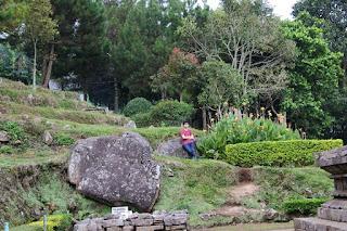 Taman Area  Candi Gedong I