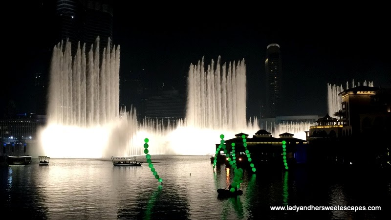 Luminous Algae at Dubai Festival of Lights