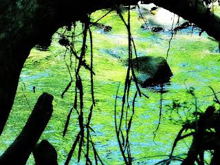 Sanga em Trilha do Parque Saint Hilaire, Viamão