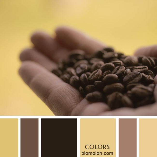 variedad_en_color_paletas_de_colores_71