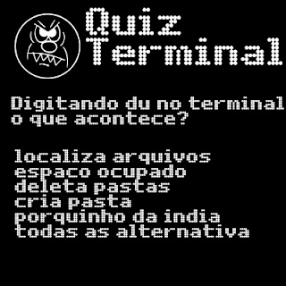 Digitando Du no Terminal