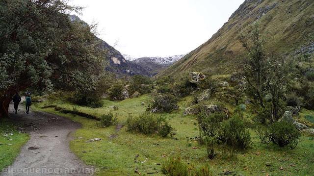 Quebrada Demanda, Laguna 69, senda, verde, arboles, peru, cordillera Blanca
