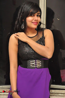 Telugu Actress Rachana Smith Stills at Money is Honey Audio Release  0023.jpg