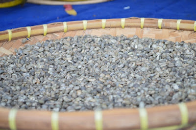 Drying process organic coffee green beans