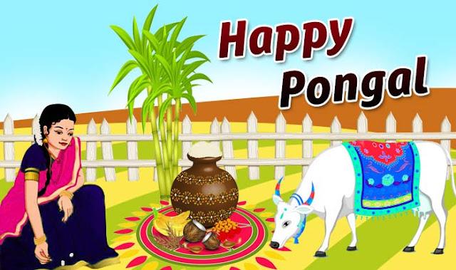 happy pongal,pongal wishes,happy pongal 2019,pongal,happy pongal 2018,happy pongal whatsapp status,pongal festival,pongal 2019,pongal whatsapp status,happy pongal whatsapp video,pongal wishes tamil,happy pongal wishes,pongal status,pongal whatsapp video,pongal wishes 2019,pongal greetings,happy pongal wish status,pongal 2019 video status,pongal 2019 whatsapp status,happy pongal status,happy pongal 2019 hd images