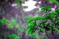 Finalmente la pioggia!