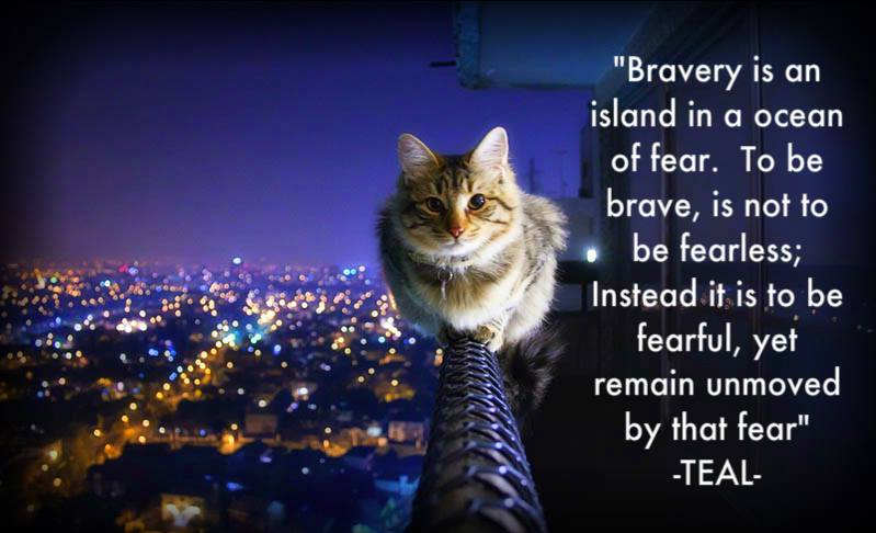 Bravery Sayings and Quotes ~ Best Quotes and Sayings