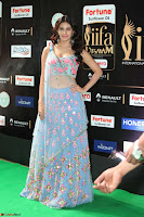 Amyra Dastur in Flower Print Choli Transparent Chunni at IIFA Utsavam Awards 39.JPG