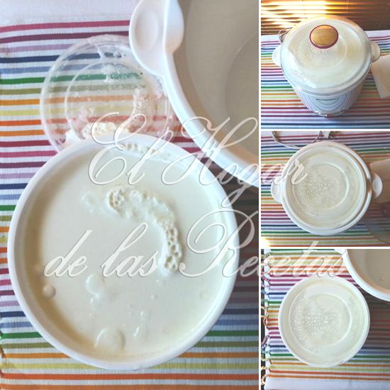 Cómo hacer yogur en la Yogurtera Silver Crest