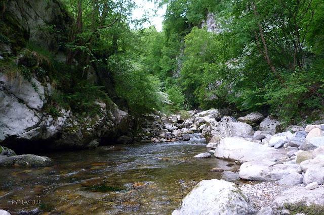 Foz del Río Ponga - Parque Natural de Ponga - Asturias