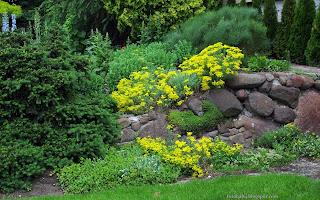 http://fotobabij.blogspot.com/2015/03/ogrod-skalny-rock-garden.html