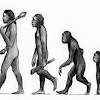 Pengertian manusia purba
