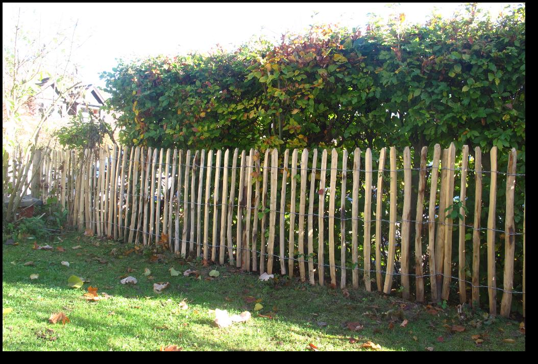Zaun Zum Nachbarn gartenabtrennung zum nachbarn garten