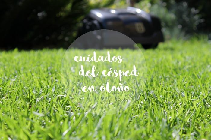 Cuidados del c sped en oto o guia de jardin for Cuidados del jardin