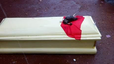 Coffin and dead chicken dumped in front of an Electoral Commission office