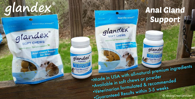 glandex cats dogs anal gland health