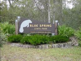 Lori S Blog Reviews And More Florida Tourism Blue Spring