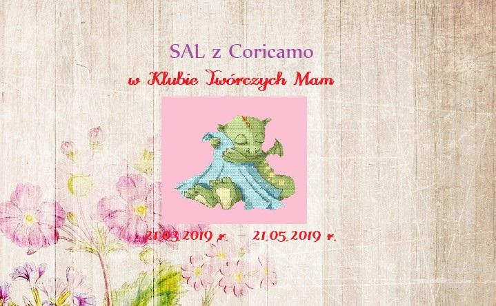 ban - SAL zCoricamo - podsumowanie