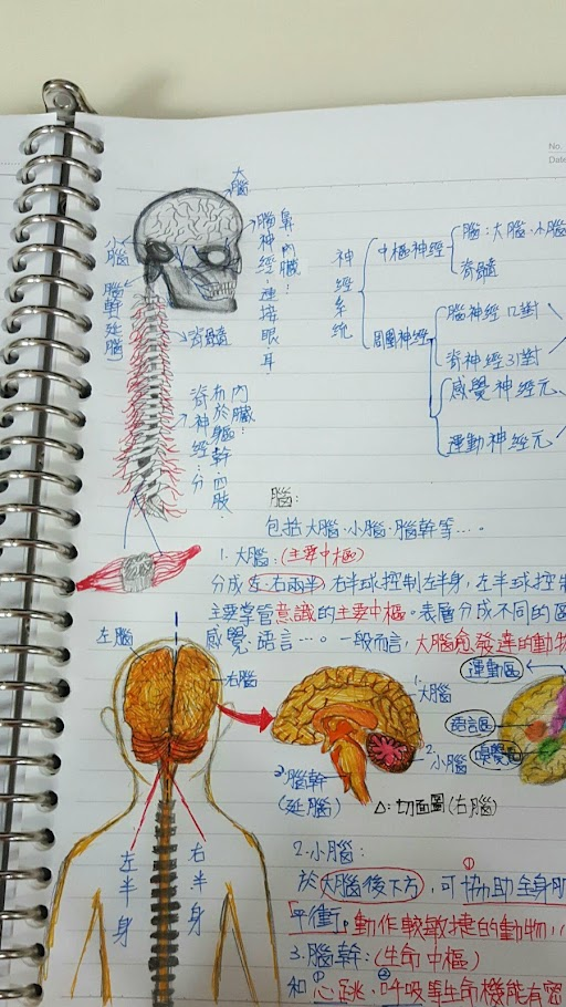 學生課堂筆記