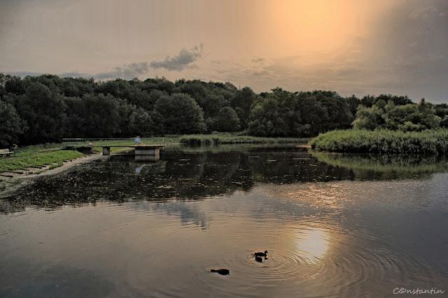 Lacul - Grãdina Botanicã Iași - varianta HDR