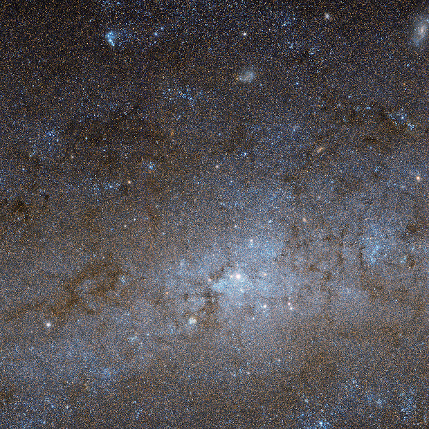 The Center of Spiral Galaxy NGC 247